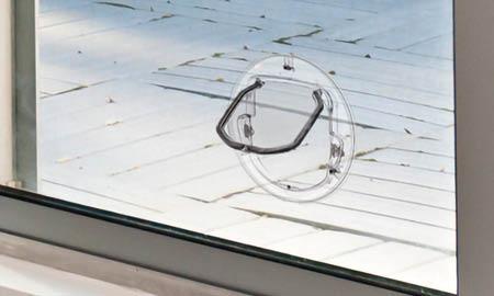 custom-pet-door-glass